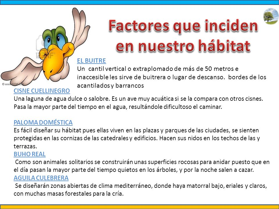 Factores que inciden en nuestro hábitat