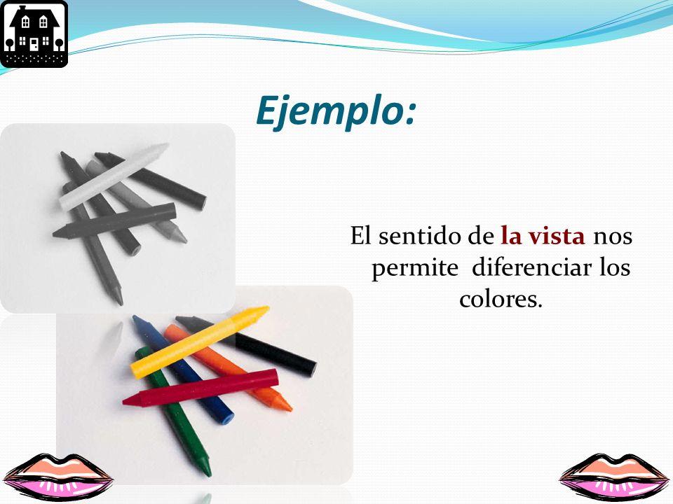 El sentido de la vista nos permite diferenciar los colores.
