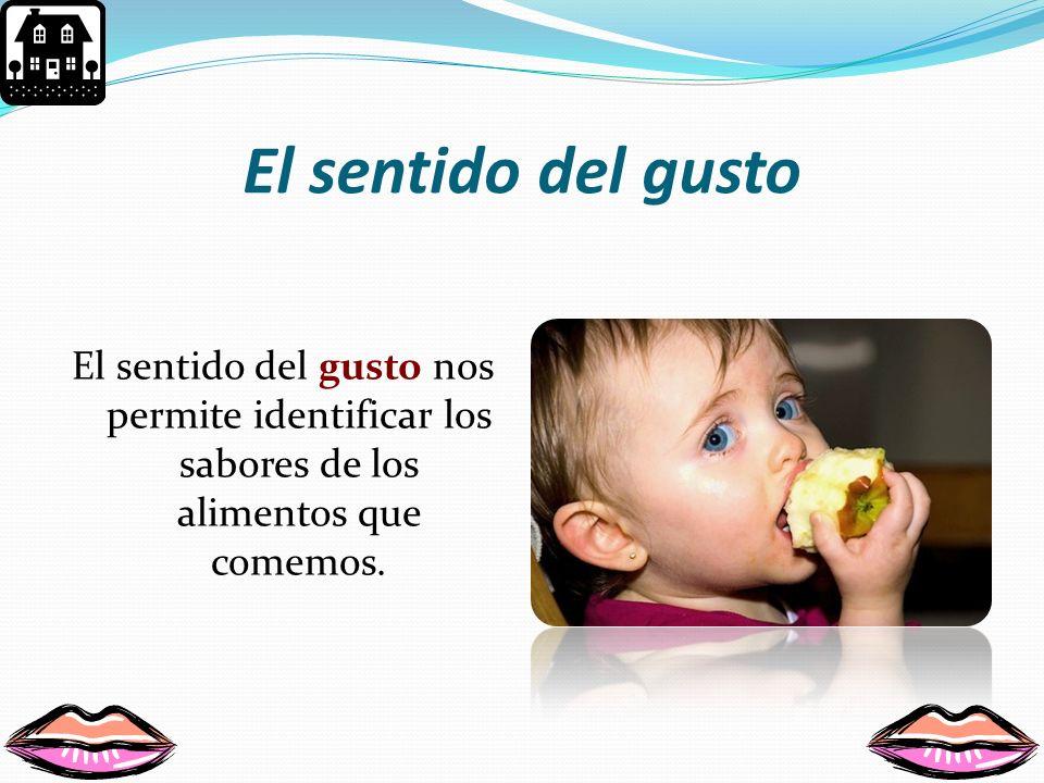El sentido del gusto El sentido del gusto nos permite identificar los sabores de los alimentos que comemos.