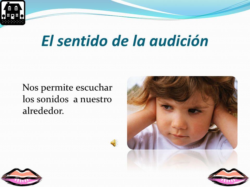 El sentido de la audición