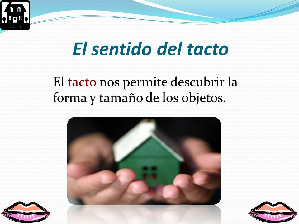 El sentido del tacto El tacto nos permite descubrir la forma y tamaño de los objetos.