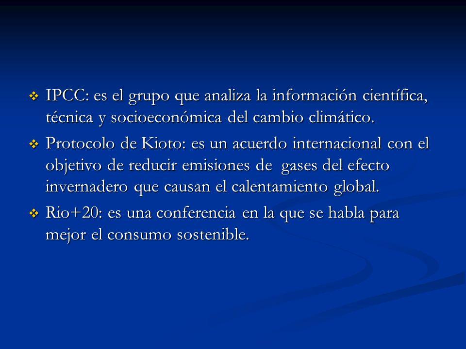 IPCC: es el grupo que analiza la información científica, técnica y socioeconómica del cambio climático.