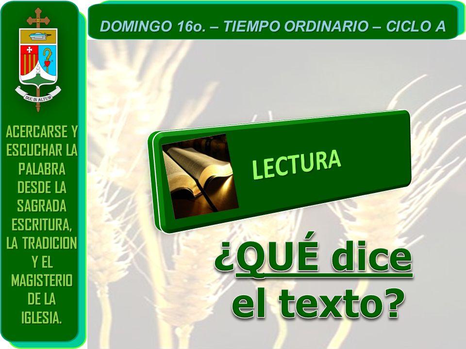 ¿QUÉ dice el texto LECTURA ACERCARSE Y ESCUCHAR LA PALABRA