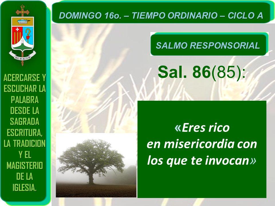 Sal. 86(85): «Eres rico en misericordia con los que te invocan»