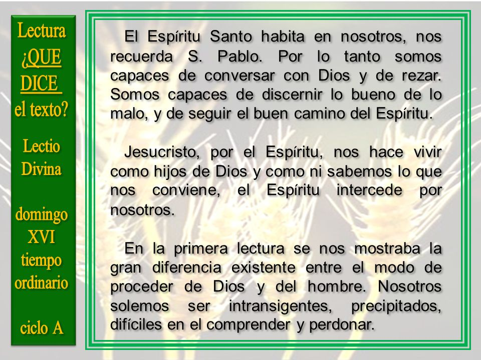 Lectura ¿QUE DICE el texto Lectio Divina domingo XVI tiempo ordinario