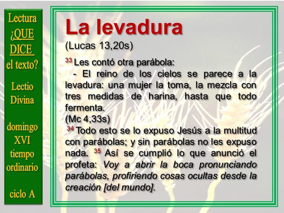 La levadura Lectura ¿QUE DICE el texto Lectio Divina domingo XVI
