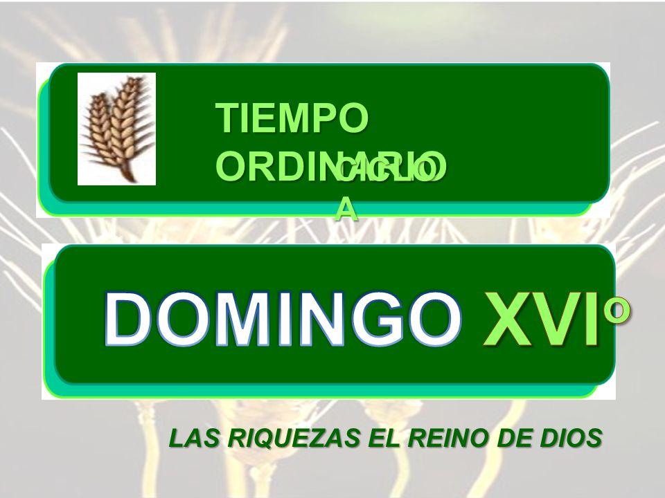 TIEMPO ORDINARIO CICLO A DOMINGO XVIo LAS RIQUEZAS EL REINO DE DIOS