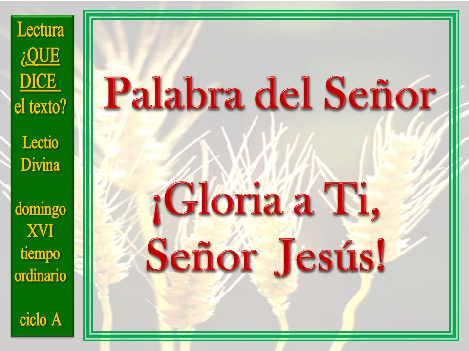 Palabra del Señor Señor Jesús!