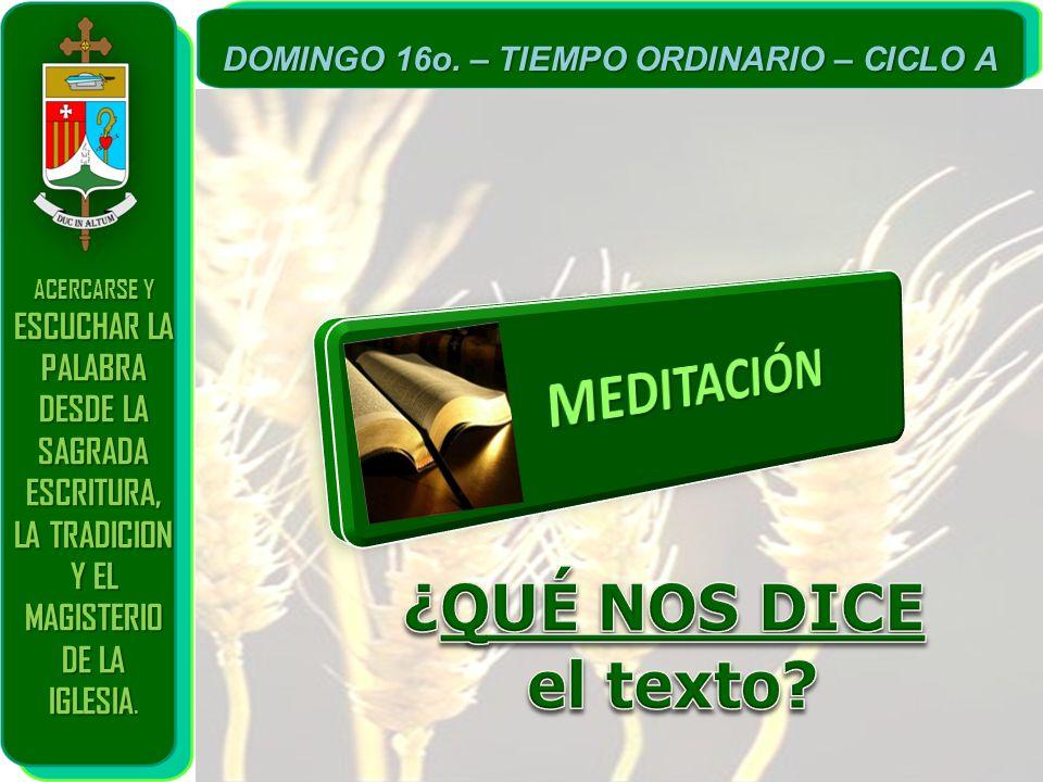 MEDITACIÓN ¿QUÉ NOS DICE el texto DESDE LA SAGRADA ESCRITURA,