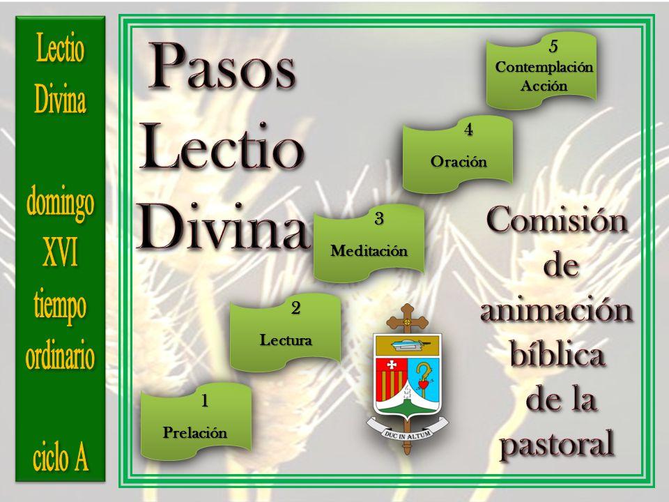 Pasos Lectio Divina Comisión de animación bíblica de la pastoral
