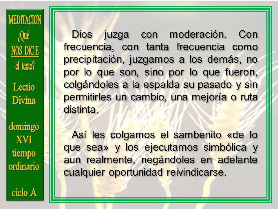 MEDITACION ¿Qué NOS DIC E el texto Lectio Divina domingo XVI tiempo