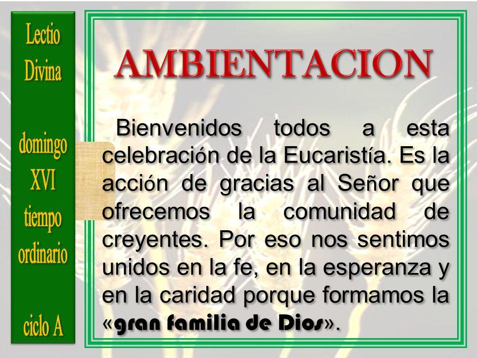 Lectio Divina. domingo. XVI. tiempo. ordinario. ciclo A. AMBIENTACION.