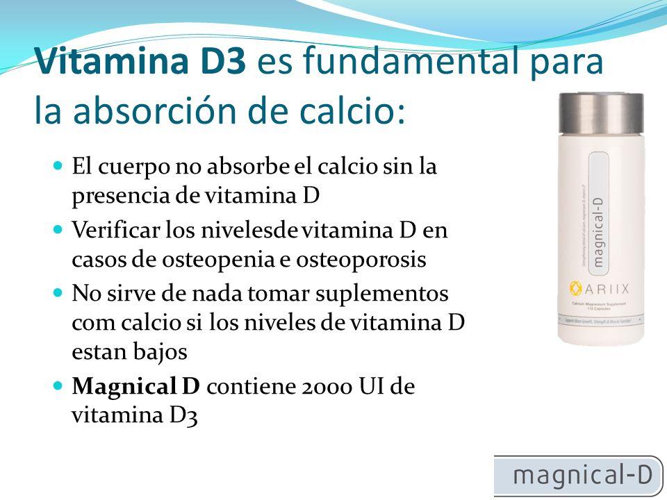 Vitamina D3 es fundamental para la absorción de calcio: