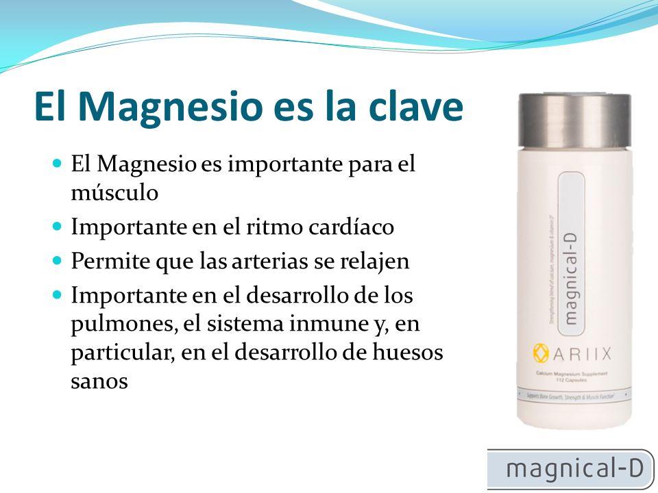 El Magnesio es la clave El Magnesio es importante para el músculo