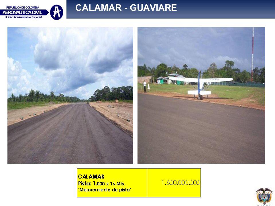 CALAMAR - GUAVIARE