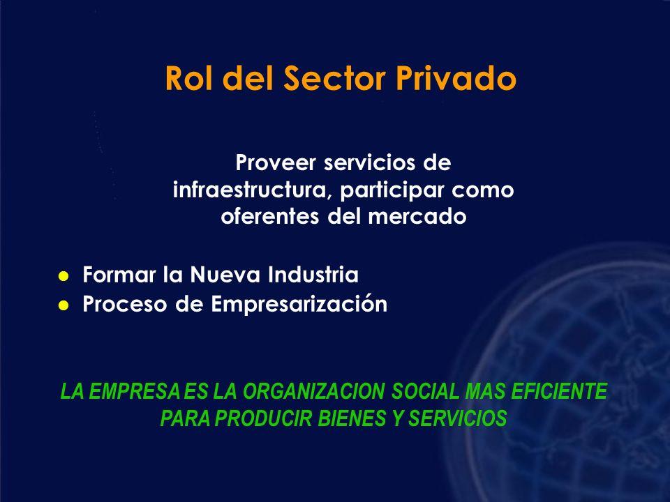 Rol del Sector Privado Proveer servicios de infraestructura, participar como oferentes del mercado.