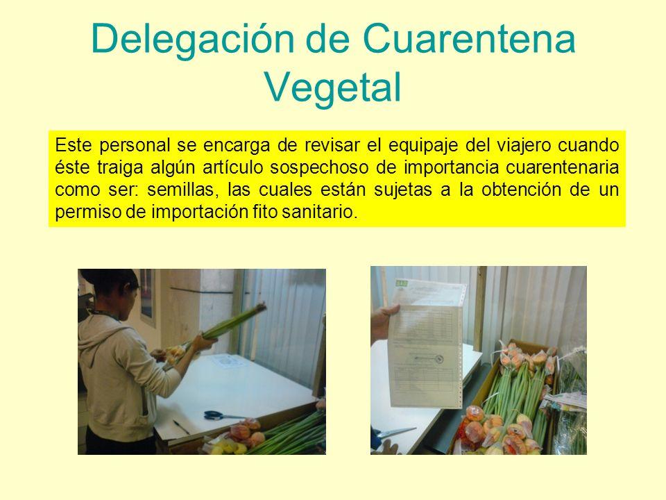 Delegación de Cuarentena Vegetal