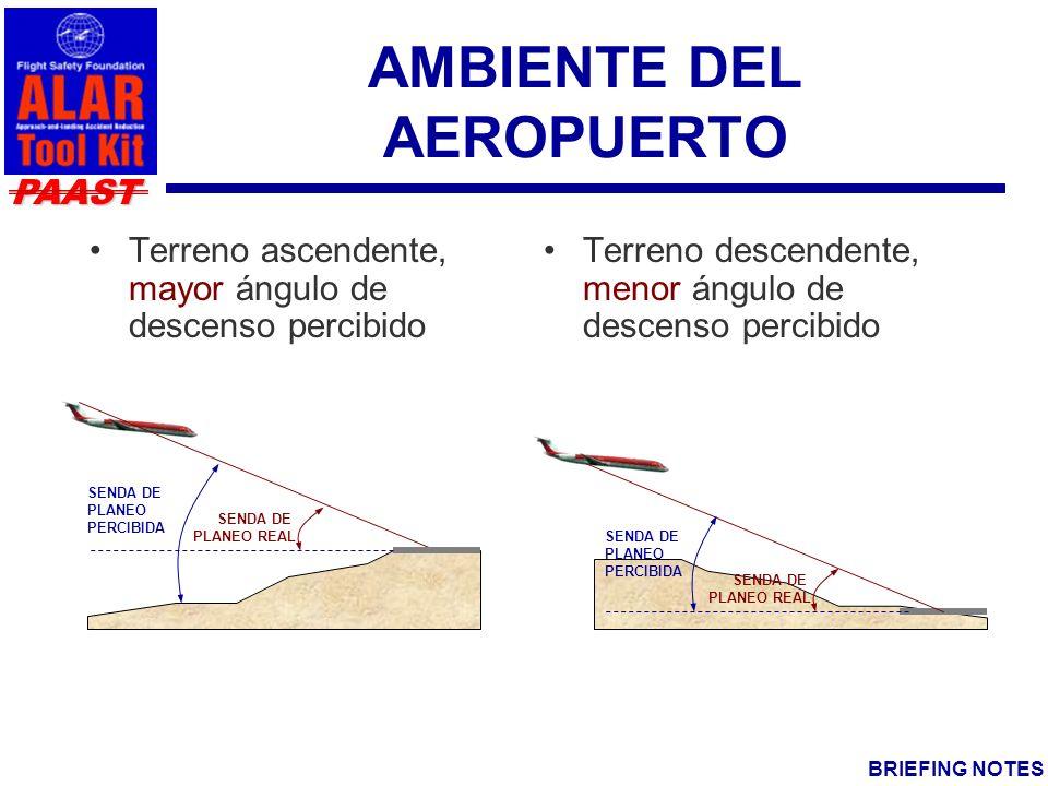 AMBIENTE DEL AEROPUERTO