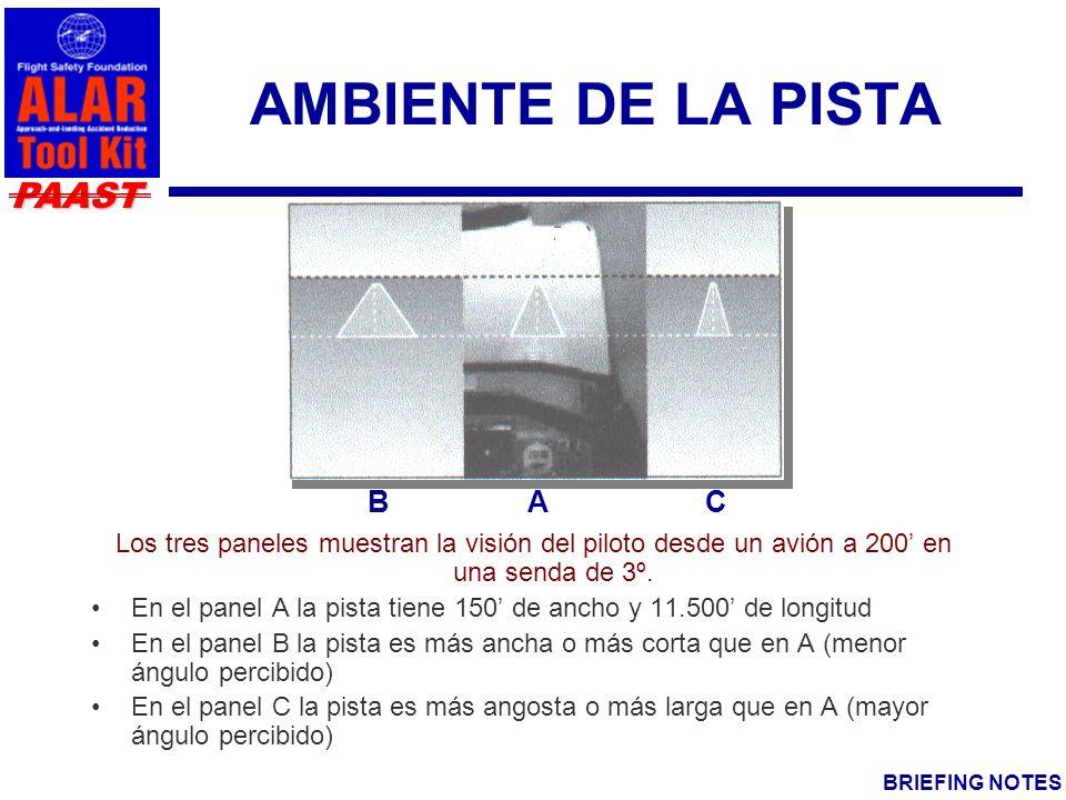 AMBIENTE DE LA PISTA B A C
