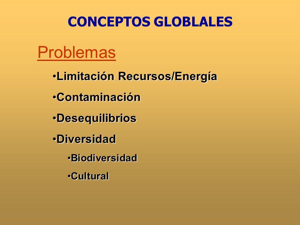 Problemas CONCEPTOS GLOBLALES Limitación Recursos/Energía