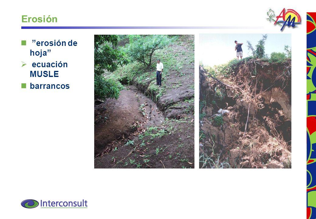 Erosión erosión de hoja ecuación MUSLE barrancos