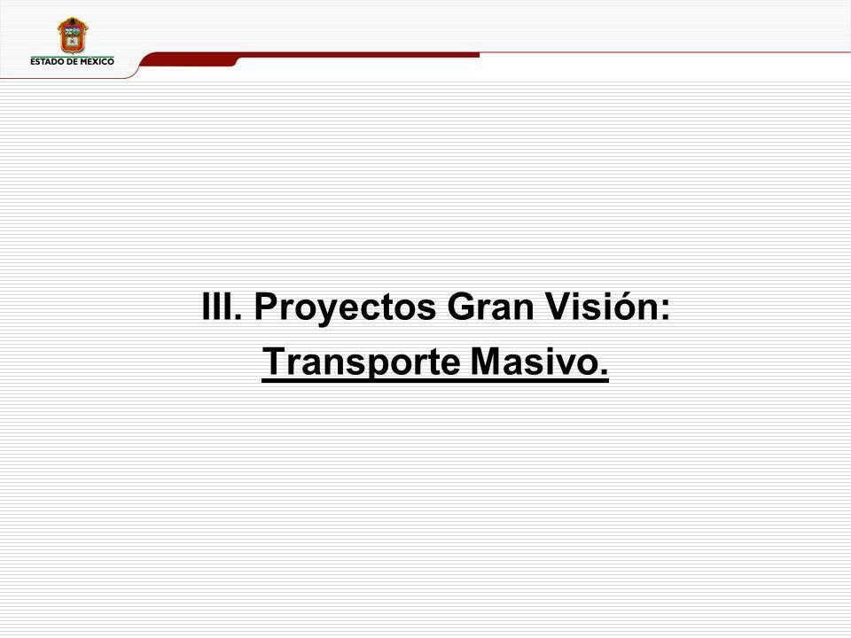 III. Proyectos Gran Visión: