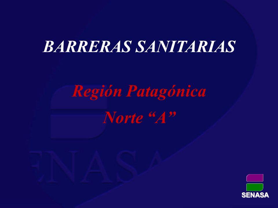 BARRERAS SANITARIAS Región Patagónica Norte A