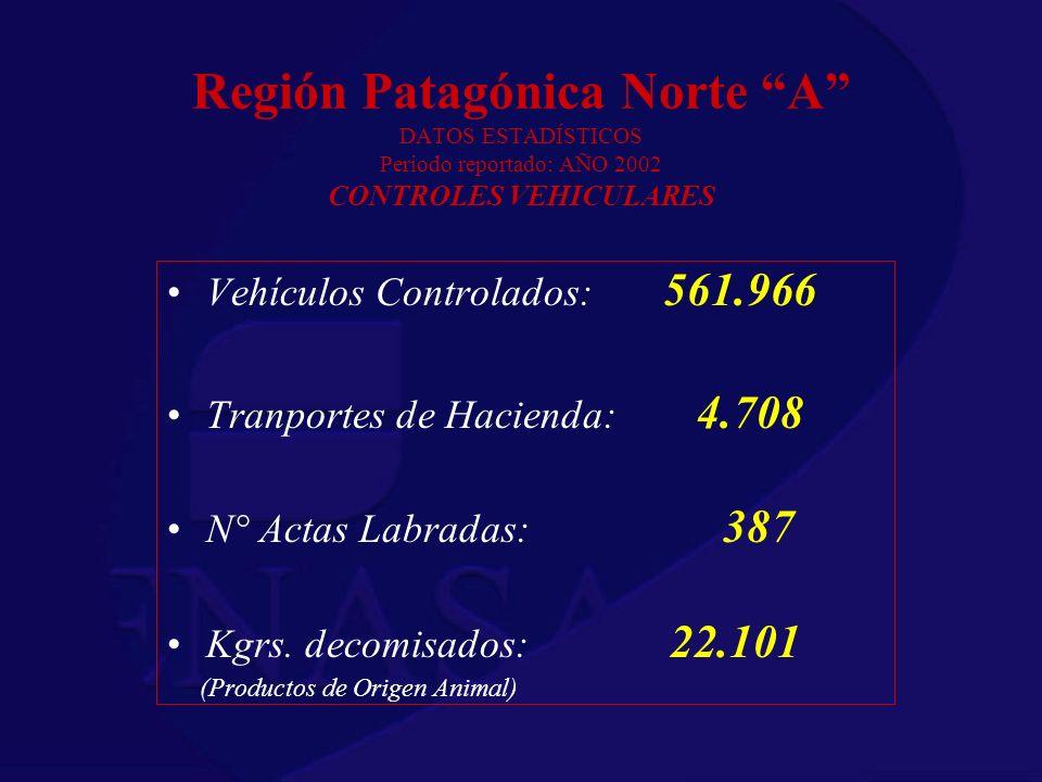 Región Patagónica Norte A DATOS ESTADÍSTICOS Periodo reportado: AÑO 2002 CONTROLES VEHICULARES