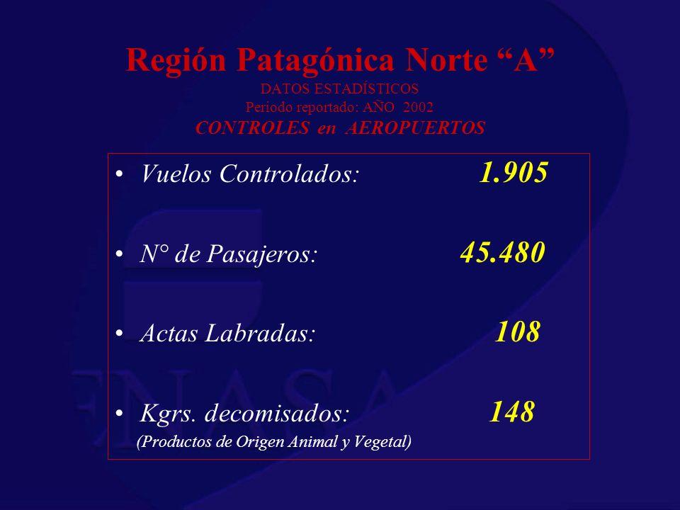 Región Patagónica Norte A DATOS ESTADÍSTICOS Periodo reportado: AÑO 2002 CONTROLES en AEROPUERTOS