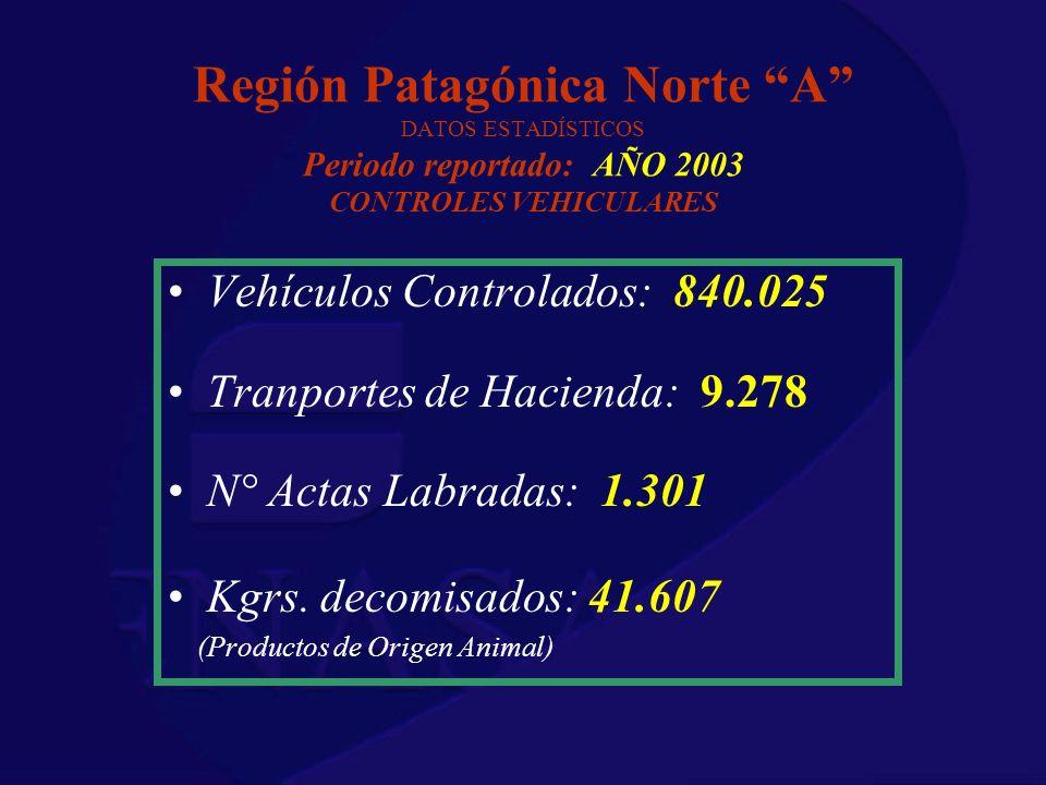 Región Patagónica Norte A DATOS ESTADÍSTICOS Periodo reportado: AÑO 2003 CONTROLES VEHICULARES