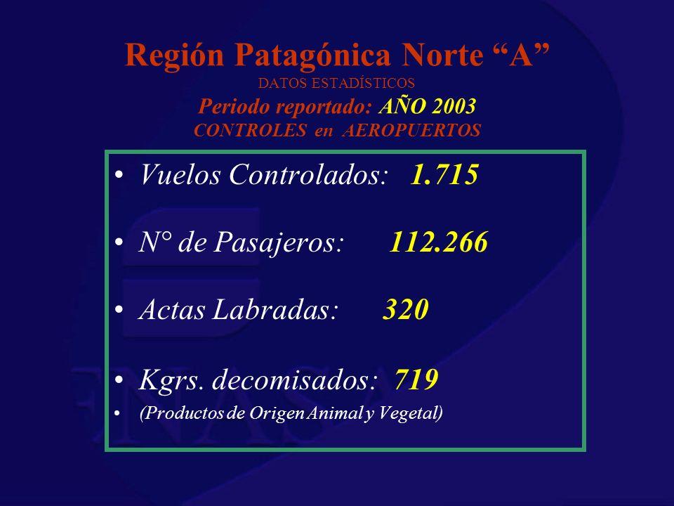 Región Patagónica Norte A DATOS ESTADÍSTICOS Periodo reportado: AÑO 2003 CONTROLES en AEROPUERTOS