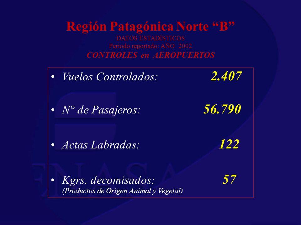 Región Patagónica Norte B DATOS ESTADÍSTICOS Periodo reportado: AÑO 2002 CONTROLES en AEROPUERTOS