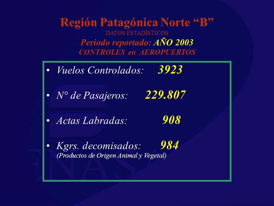 Región Patagónica Norte B DATOS ESTADÍSTICOS Periodo reportado: AÑO 2003 CONTROLES en AEROPUERTOS