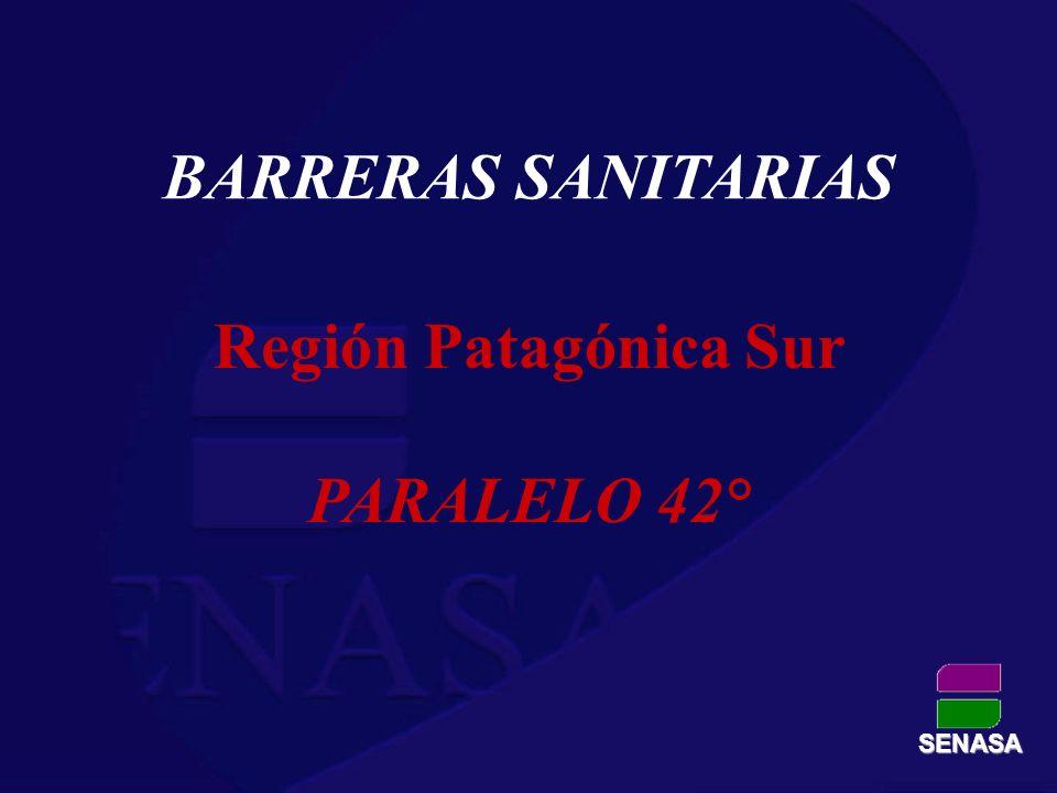 Región Patagónica Sur PARALELO 42°