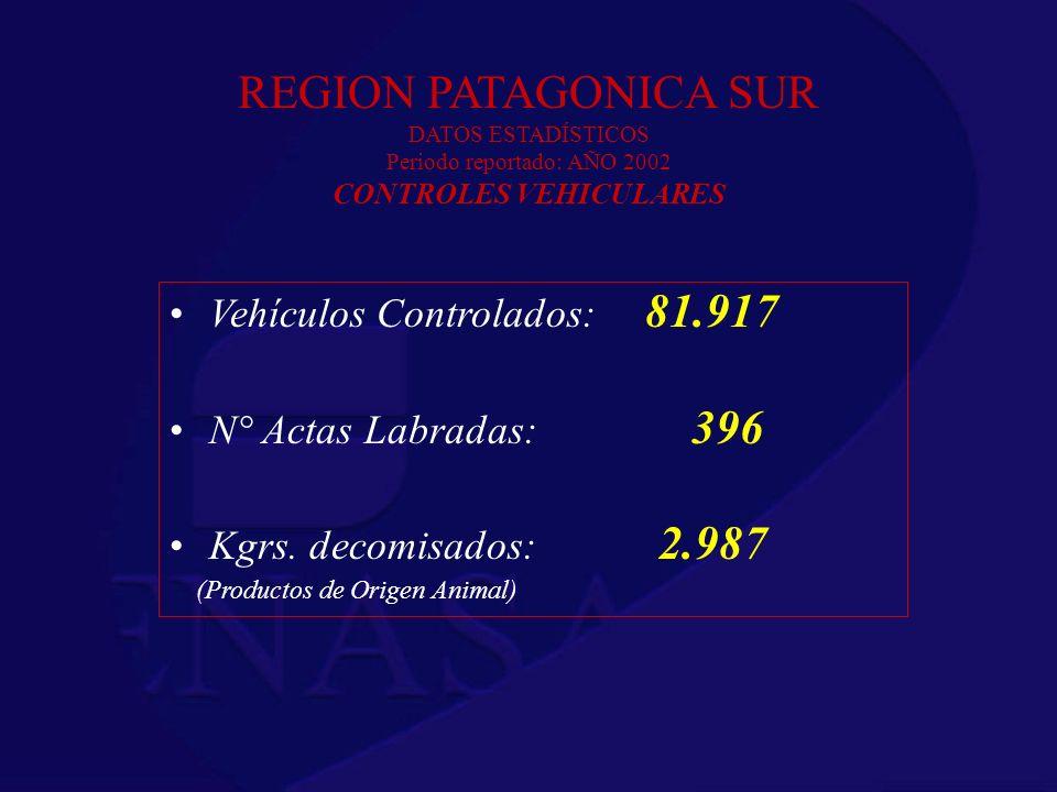 REGION PATAGONICA SUR DATOS ESTADÍSTICOS Periodo reportado: AÑO 2002 CONTROLES VEHICULARES