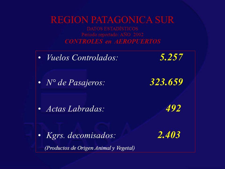 REGION PATAGONICA SUR DATOS ESTADÍSTICOS Periodo reportado: AÑO 2002 CONTROLES en AEROPUERTOS