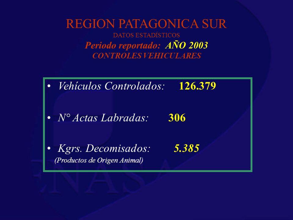 REGION PATAGONICA SUR DATOS ESTADÍSTICOS Periodo reportado: AÑO 2003 CONTROLES VEHICULARES