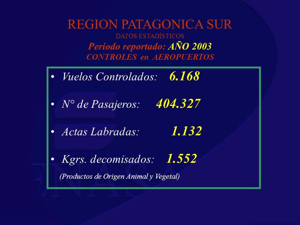 REGION PATAGONICA SUR DATOS ESTADÍSTICOS Periodo reportado: AÑO 2003 CONTROLES en AEROPUERTOS