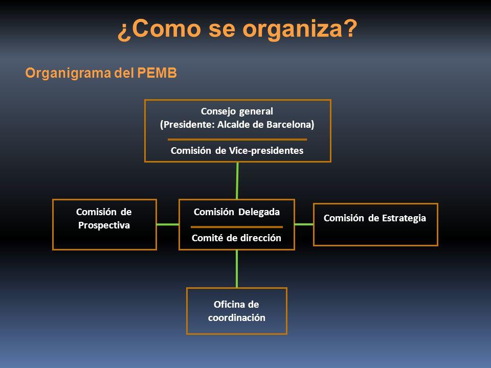 ¿Como se organiza Organigrama del PEMB Consejo general