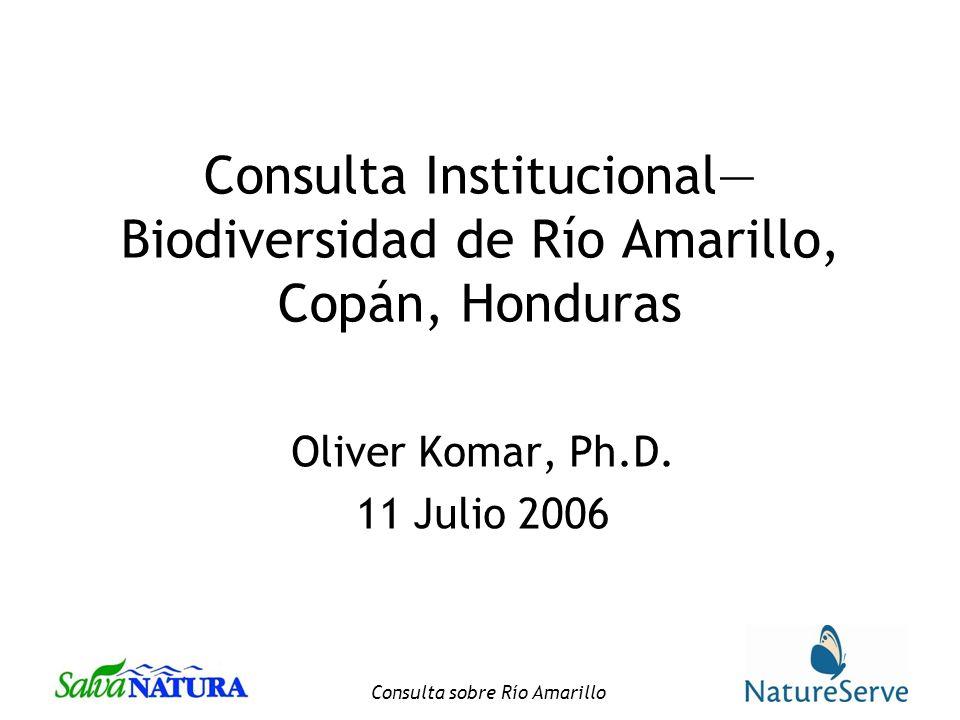 Consulta Institucional—Biodiversidad de Río Amarillo, Copán, Honduras