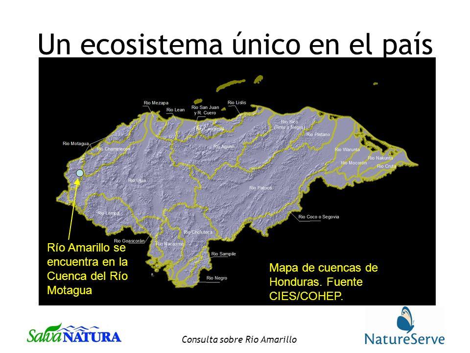 Un ecosistema único en el país