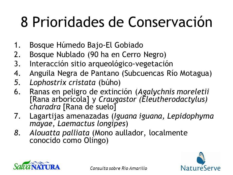 8 Prioridades de Conservación