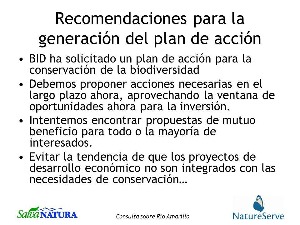 Recomendaciones para la generación del plan de acción