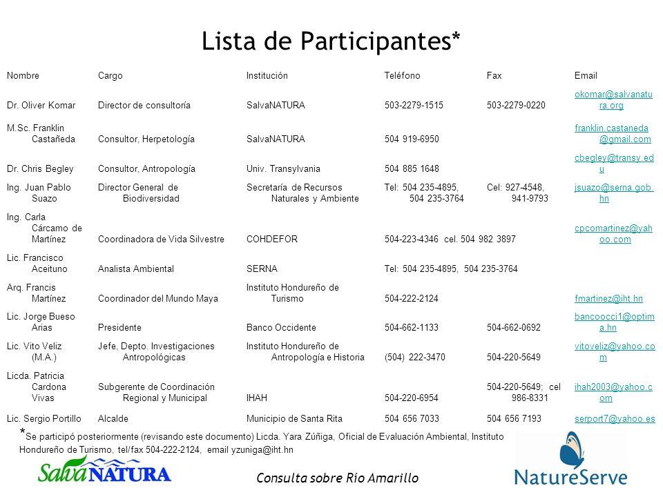 Lista de Participantes*