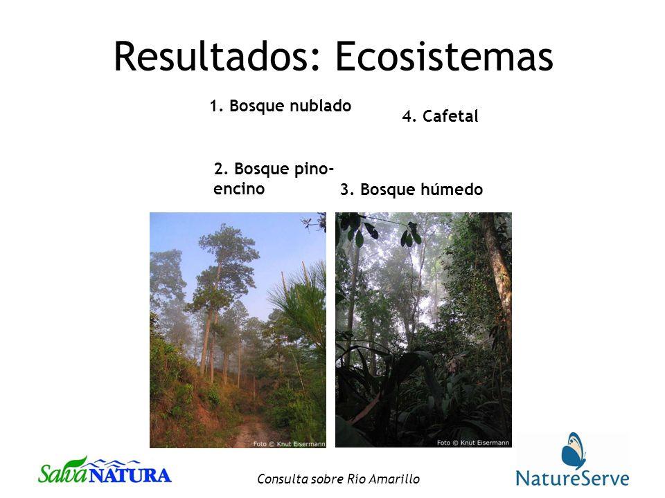 Resultados: Ecosistemas