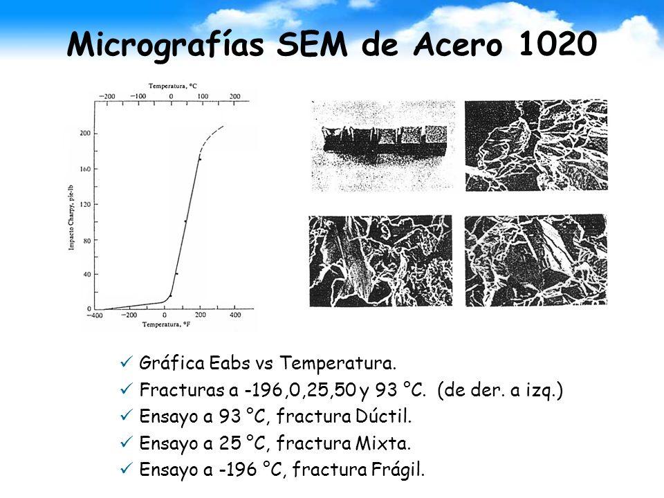 Micrografías SEM de Acero 1020