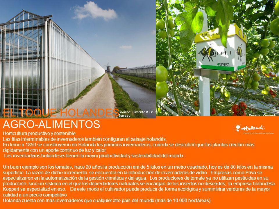 EL TOQUE HOLANDES AGRO-ALIMENTOS Horticultura productivo y sostenible.