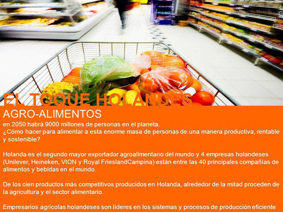 EL TOQUE HOLANDES AGRO-ALIMENTOS
