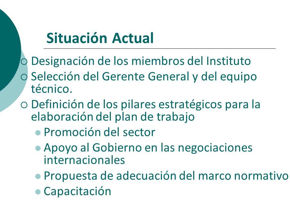 Situación Actual Designación de los miembros del Instituto