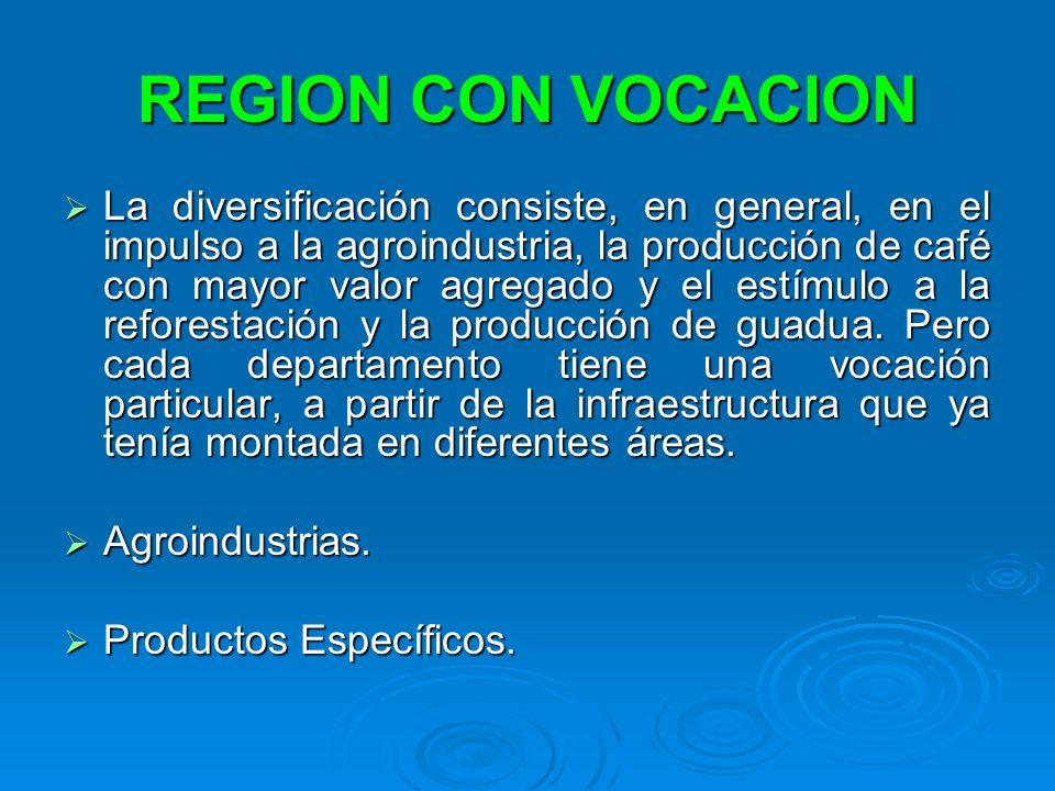 REGION CON VOCACION